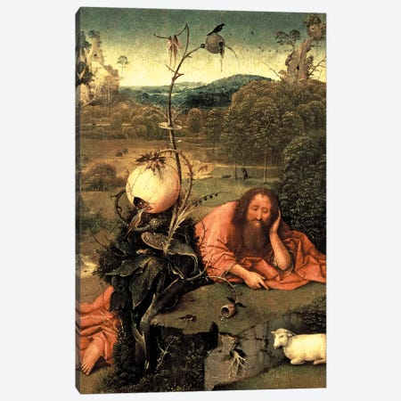 St. John The Baptist In Meditation Canvas Print #BMN7107} by Hieronymus Bosch Canvas Artwork