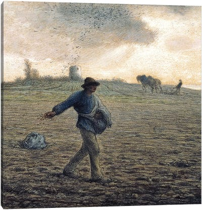 The Sower (Private Collection) Canvas Art Print