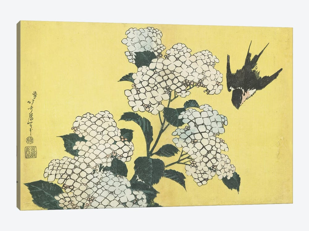 Hydrangea And Swallow, c.1832 1-piece Canvas Artwork