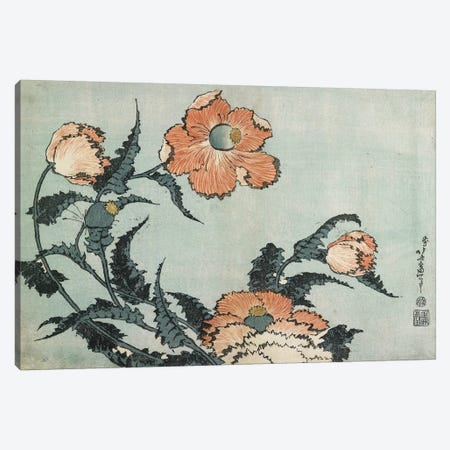 Poppies, c.1832 Canvas Print #BMN7156} by Katsushika Hokusai Art Print