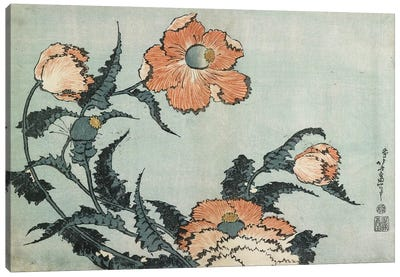 Poppies, c.1832 Canvas Art Print