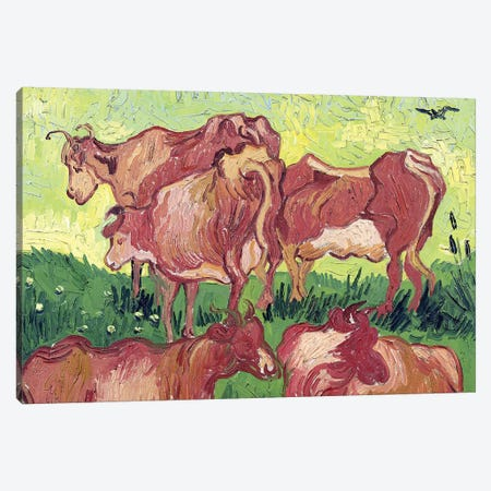 Cows, 1890 Canvas Print #BMN7206} by Vincent van Gogh Art Print