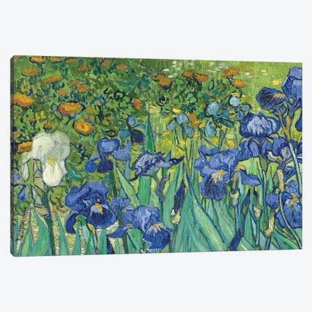 Detail Of Center-Left, Irises, 1889 Canvas Print #BMN7207} by Vincent van Gogh Canvas Print