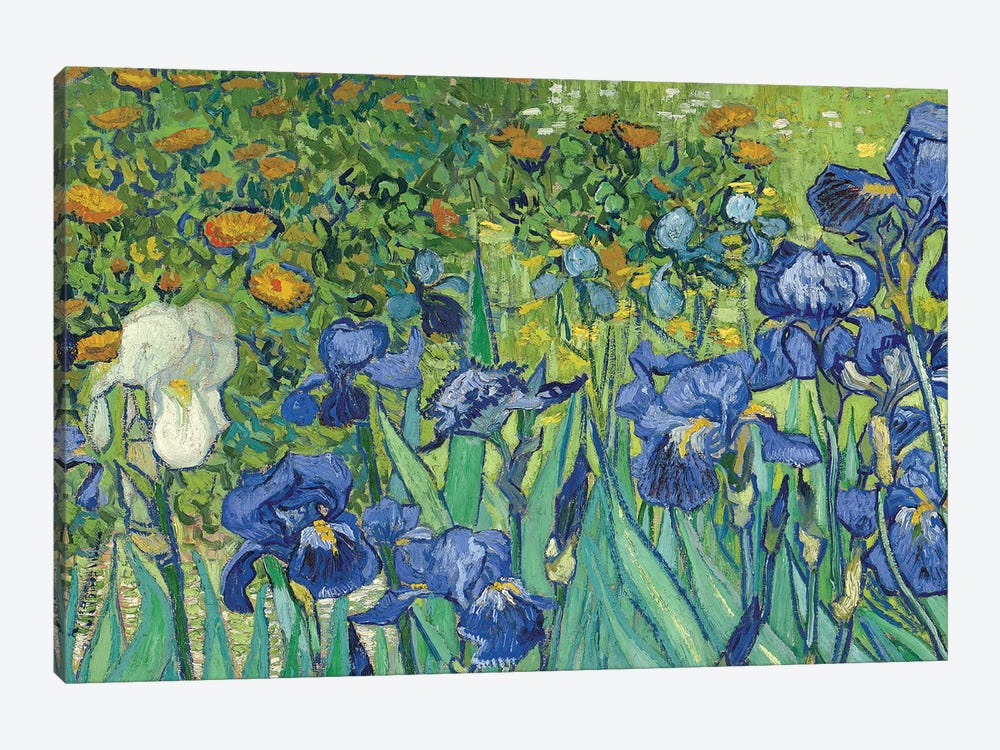 Detail Of Center-Left, Irises, 1889 by Vincent van Gogh 1-piece Art Print