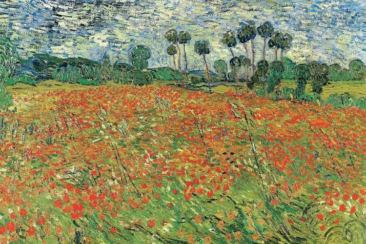 Field Of Poppies Auvers Sur Oise 1890 Can Vincent Van Gogh Icanvas