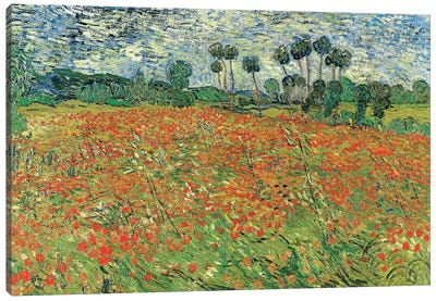 Field Of Poppies, Auvers-sur-Oise, 1890 Canvas Art Print