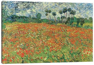 Field Of Poppies, Auvers-sur-Oise, 1890 Canvas Art Print