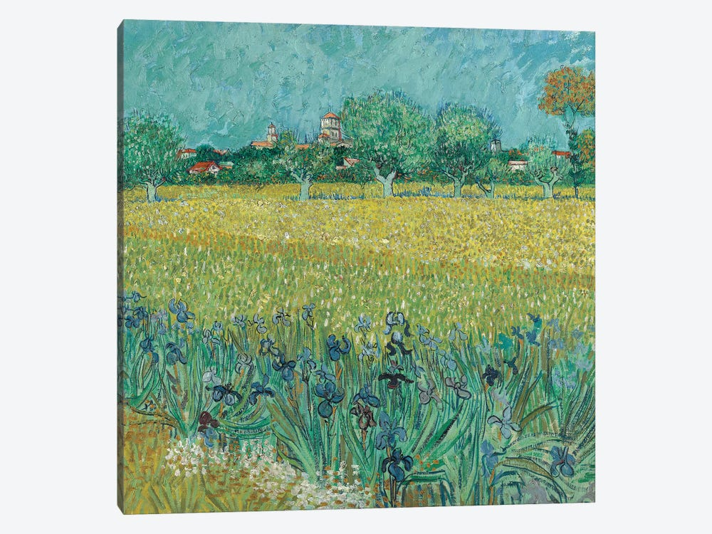Field With Flowers Near Arles, 1888 1-piece Canvas Art Print