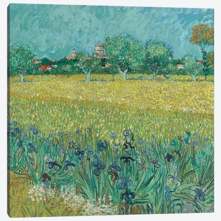 Field With Flowers Near Arles, 1888 3-Piece Canvas #BMN7210} by Vincent van Gogh Canvas Art Print