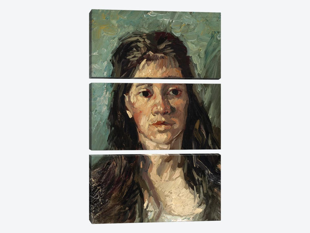 Head Of A Prostitute, 1885 by Vincent van Gogh 3-piece Canvas Art