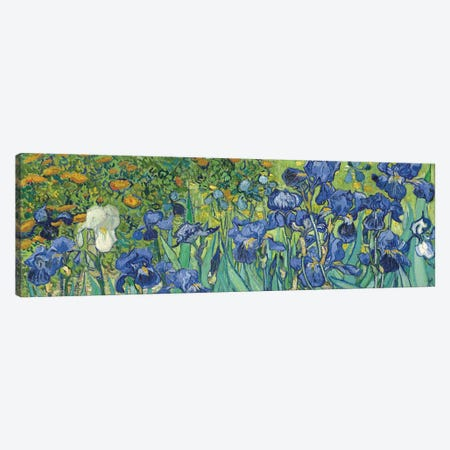 Irises, 1889 Canvas Print #BMN7214} by Vincent van Gogh Canvas Wall Art