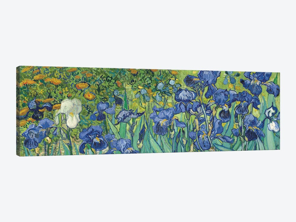 Irises, 1889 by Vincent van Gogh 1-piece Canvas Art Print