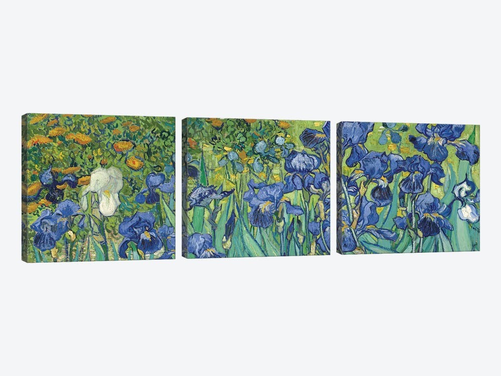 Irises, 1889 by Vincent van Gogh 3-piece Canvas Art Print
