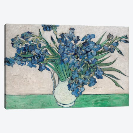 Irises, 1890 Canvas Print #BMN7215} by Vincent van Gogh Canvas Artwork