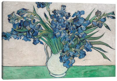 Irises, 1890 Canvas Art Print