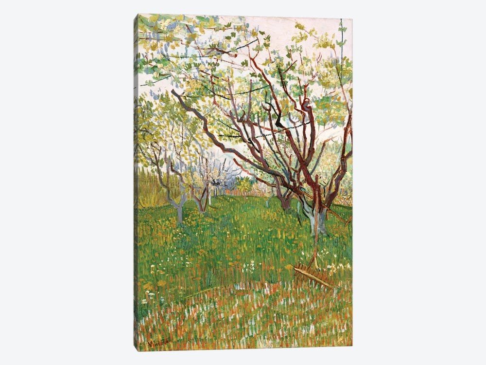 The Flowering Orchard, 1888 by Vincent van Gogh 1-piece Canvas Wall Art