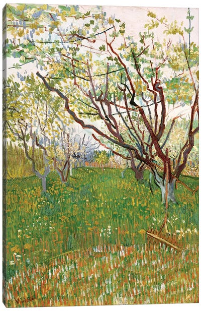 The Flowering Orchard, 1888 Canvas Art Print