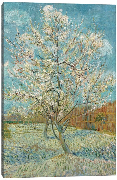 The Pink Peach Tree, 1888 Canvas Art Print