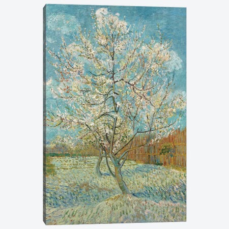 The Pink Peach Tree, 1888 3-Piece Canvas #BMN7228} by Vincent van Gogh Canvas Artwork