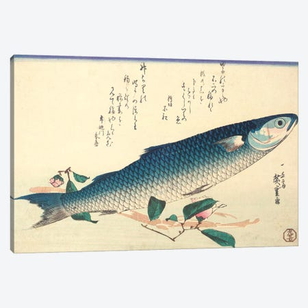 Grey Mullet, Camellia And Udo (Private Collection) Canvas Print #BMN7259} by Utagawa Hiroshige Canvas Print
