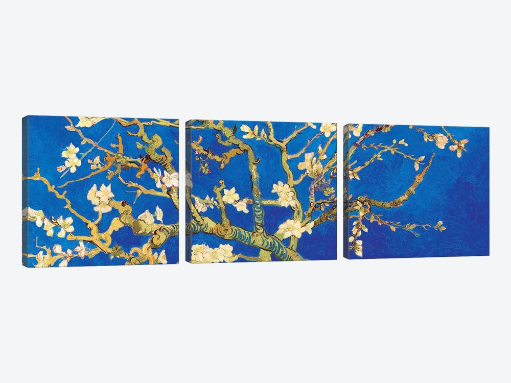 Almond Blossom On Royal Blue by Vincent van Gogh 3-piece Art Print