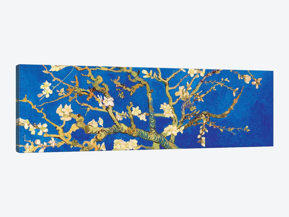 Almond Blossom On Royal Blue by Vincent van Gogh 1-piece Canvas Print