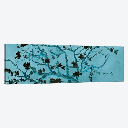 Almond Blossom On Teal Canvas Print #BMN7290} by Vincent van Gogh Canvas Print