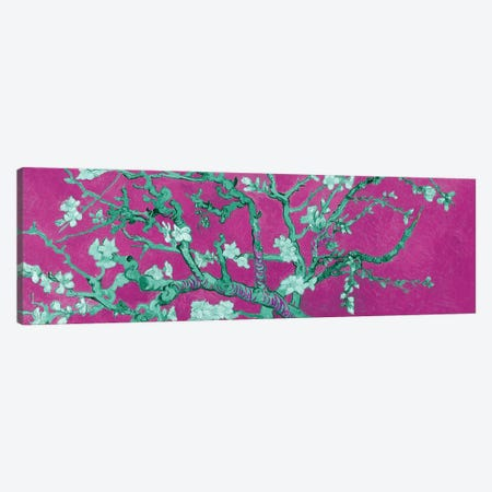 Almond Blossom On Magenta Canvas Print #BMN7293} by Vincent van Gogh Art Print