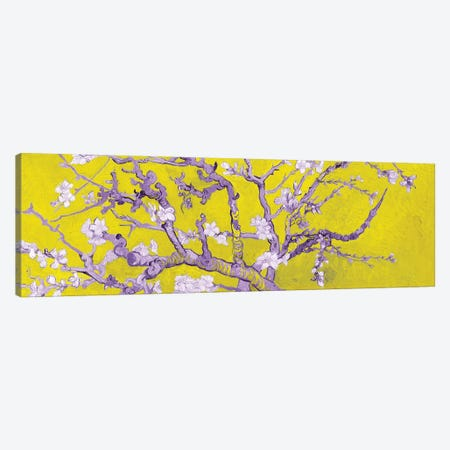 Almond Blossom On Yellow Canvas Print #BMN7296} by Vincent van Gogh Canvas Wall Art