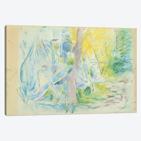 Aloes At Villa Ratti (Pastel On Paper), 1889 Canvas Print #BMN7303} by Berthe Morisot Art Print