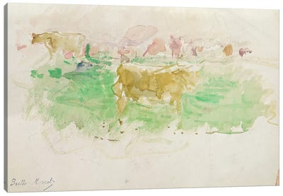 Cows In Normandy, 1880 Canvas Art Print