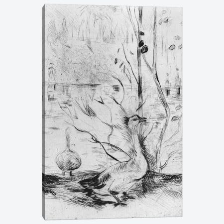 Goose, 1889 Canvas Print #BMN7322} by Berthe Morisot Canvas Print
