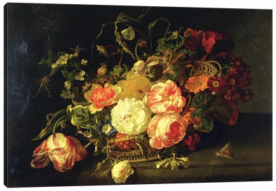 Flowers And Insects, 1711 Canvas Art Print