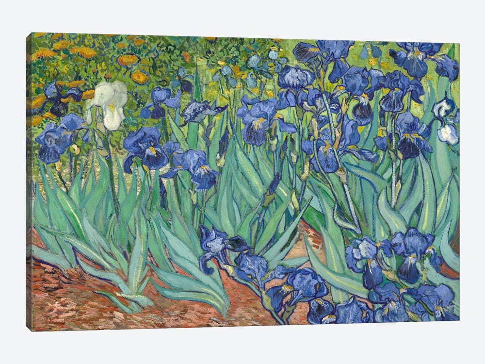 Irises, 1889  by Vincent van Gogh 1-piece Canvas Wall Art