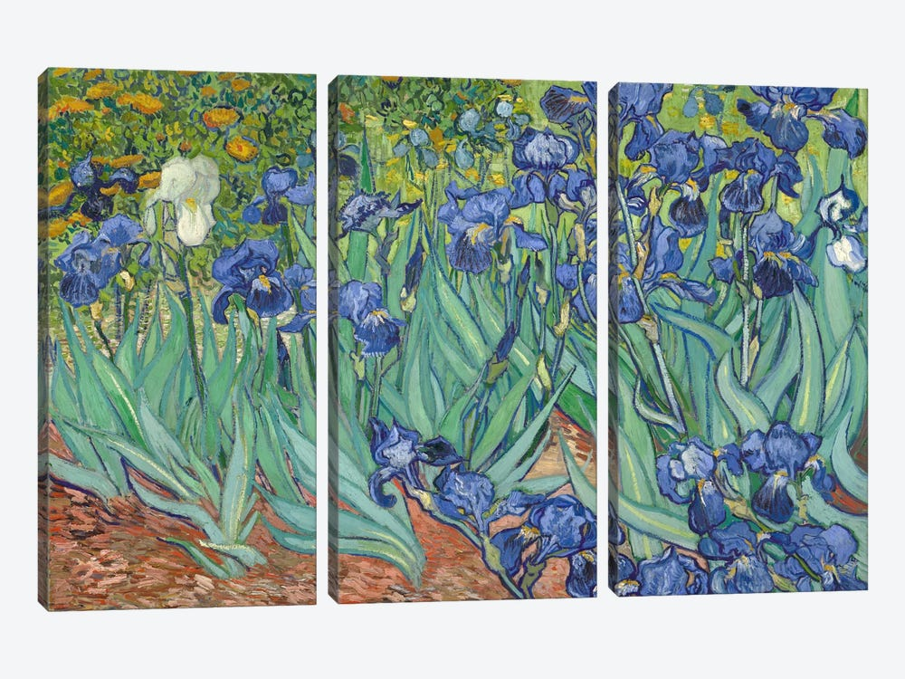 Irises, 1889 by Vincent van Gogh 3-piece Canvas Artwork