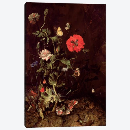 Forest Floor Still Life With Flowers And Butterflies Canvas Print #BMN7450} by Rachel Ruysch Canvas Art Print