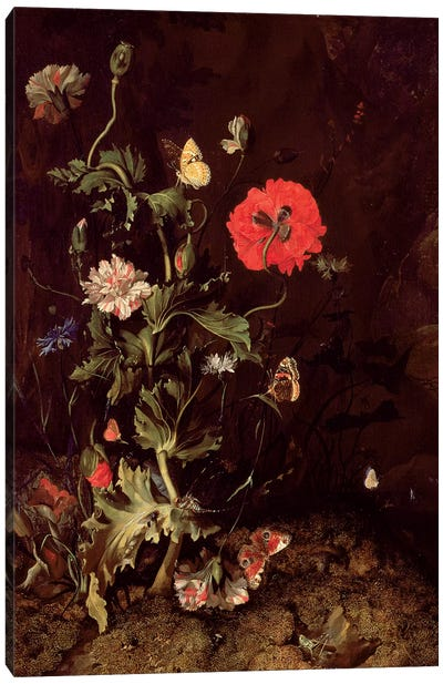 Forest Floor Still Life With Flowers And Butterflies Canvas Art Print