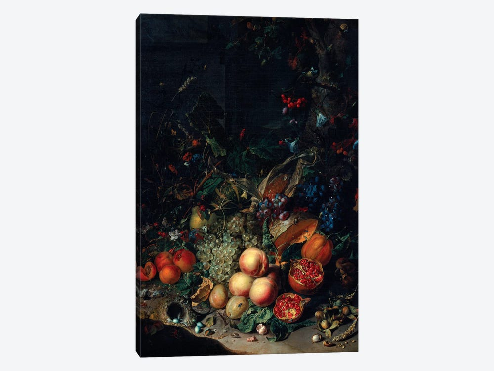 Peaches, Grapes, Pomegranates, Melons, A Corncob, Apricots, Plums, Pears And Acorns, 1718 by Rachel Ruysch 1-piece Canvas Art