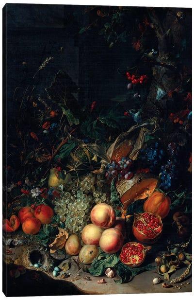 Peaches, Grapes, Pomegranates, Melons, A Corncob, Apricots, Plums, Pears And Acorns, 1718 Canvas Art Print