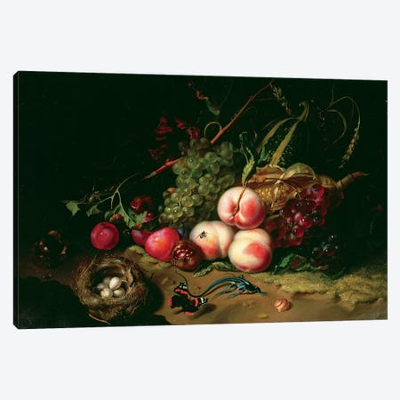 Still Life With Fruit Canvas Print #BMN7454} by Rachel Ruysch Canvas Wall Art
