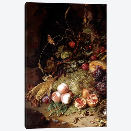 Still-Life With Fruit And Insects Canvas Print #BMN7457} by Rachel Ruysch Canvas Artwork