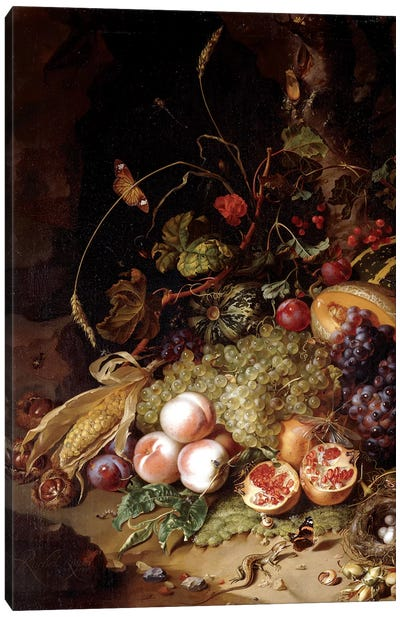 Still-Life With Fruit And Insects Canvas Art Print