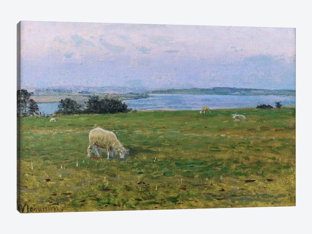 Sheep Grazing, Osterby, Skagen  by Viggo Johansen 1-piece Canvas Art Print