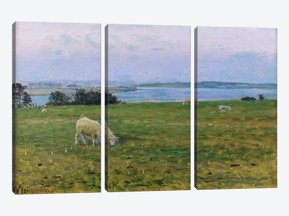 Sheep Grazing, Osterby, Skagen  by Viggo Johansen 3-piece Canvas Print