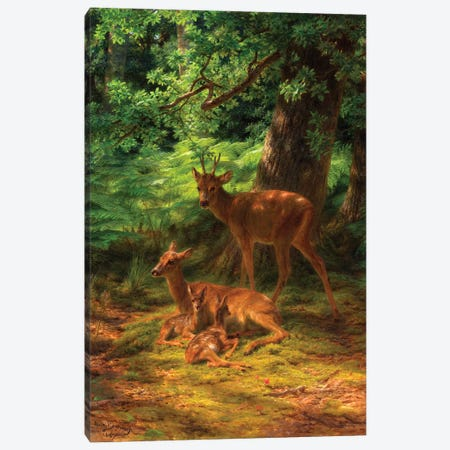 Deer In Repose, 1867 Canvas Print #BMN7542} by Rosa Bonheur Canvas Print