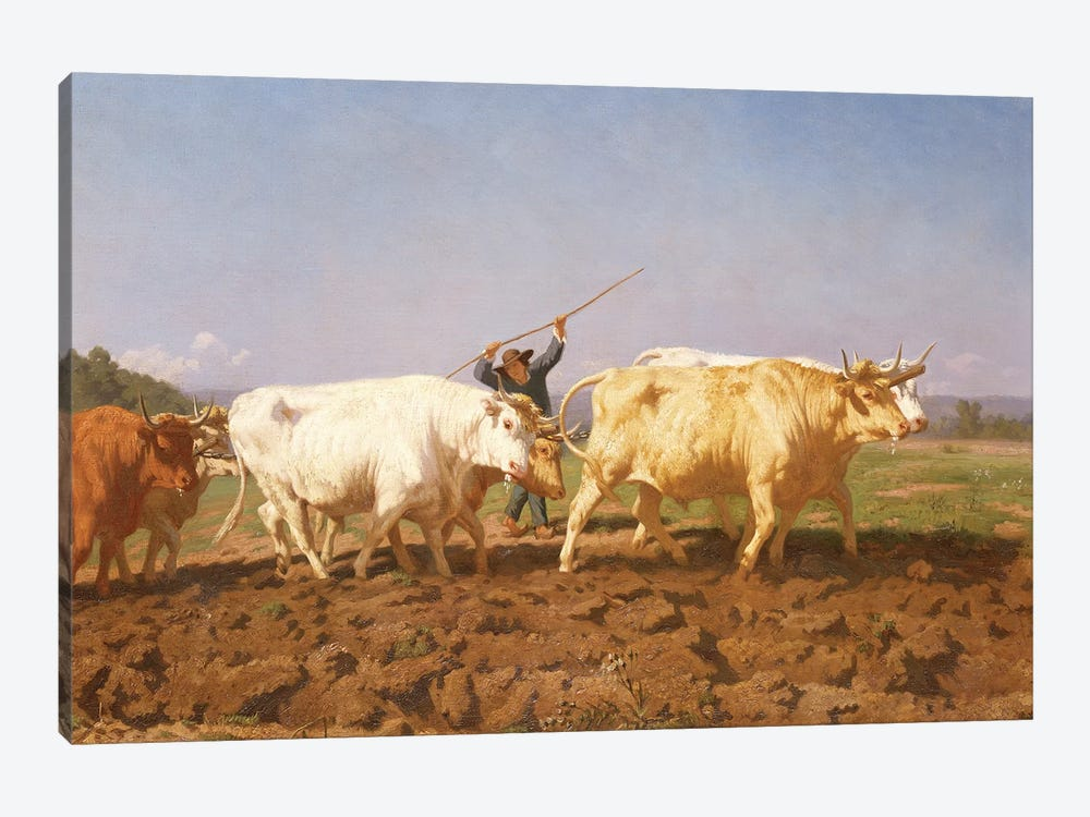 Detail Of Right Half, Ploughing In The Nivernais, 1850 by Rosa Bonheur 1-piece Canvas Wall Art