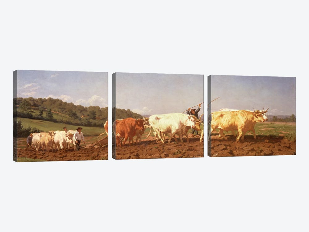 Ploughing In The Nivernais, 1850 (Private Collection) by Rosa Bonheur 3-piece Canvas Art Print