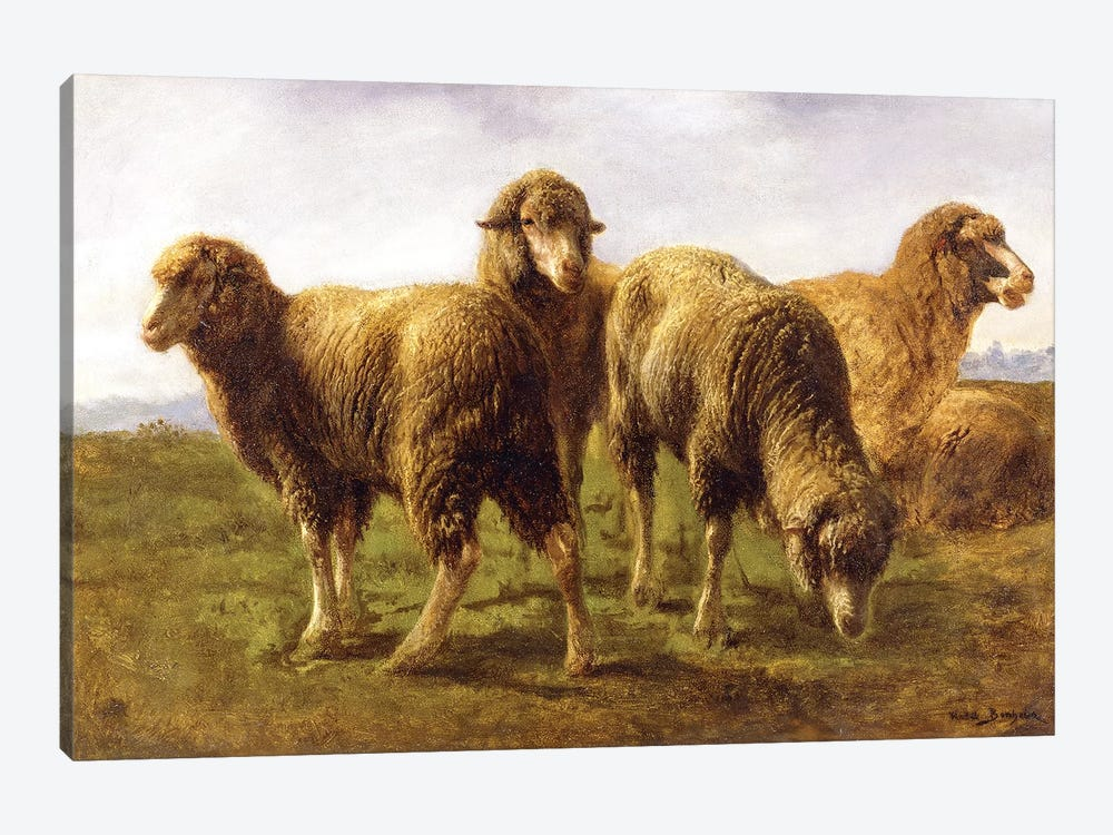 Sheep Grazing In A Meadow by Rosa Bonheur 1-piece Canvas Artwork