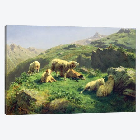 Sheep Grazing In The Pyrenees Canvas Print #BMN7550} by Rosa Bonheur Canvas Artwork