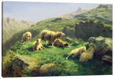 Sheep Grazing In The Pyrenees Canvas Art Print